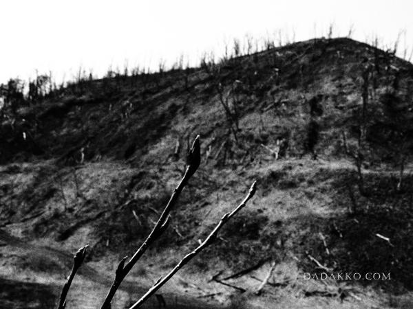 洞爺湖 金比羅火口