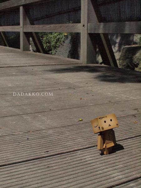 橋の上のダンボー